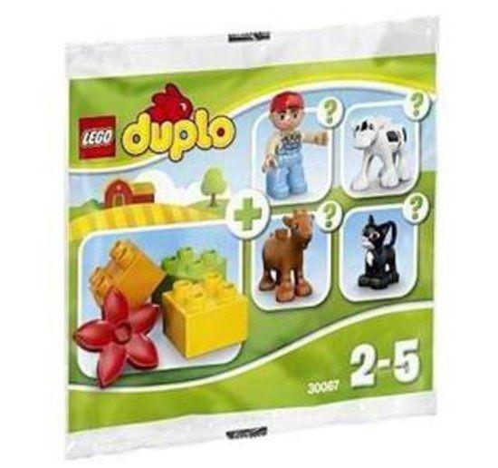 30067 Lego Duplo - Boerderij Surprise Polybag