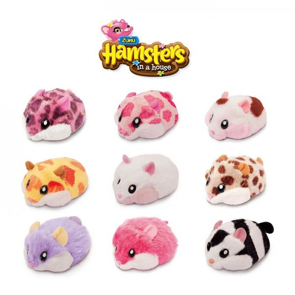 Hamsters In A House Single Pack