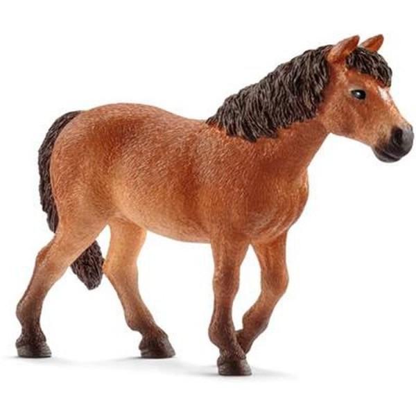 Dartmoor-Pony Stute