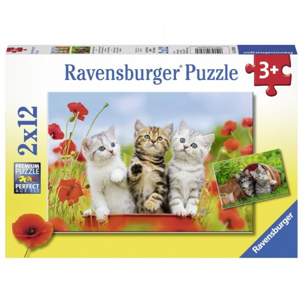 Ravensburger Puzzel Katjes op ontdekkingsreis (2x12)