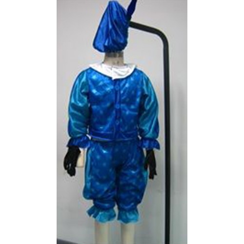 Kleding Piet blauw (maat 116-128)