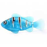Robofish Clown Blue