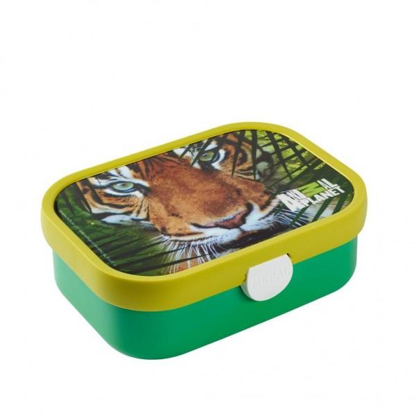 Animal planet broodtrommel tijger