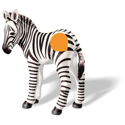Ravensburger TipToi Zebra veulen