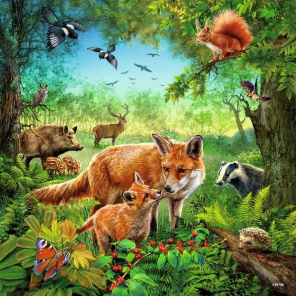 Ravensburger puzzel dieren van de wereld 3x49