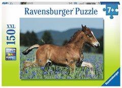 Ravensburger puzzel Veulen in de Wei (150 XXL)