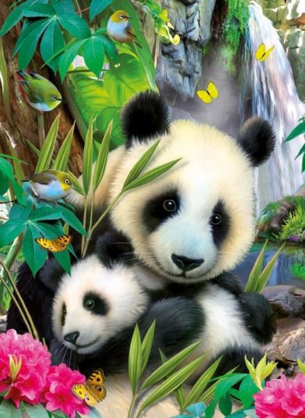 Puzzel Lieve Panda 300