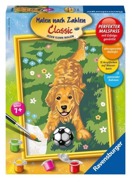 Ravensburger schilderen op nummer hond met voetbal - Schilderen kind jongen ...