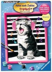 Ravensburger Schilderen op Nummer Zingende Kat