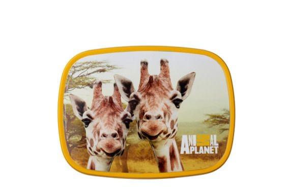 Rosti Mepal Giraffe Lunchbox