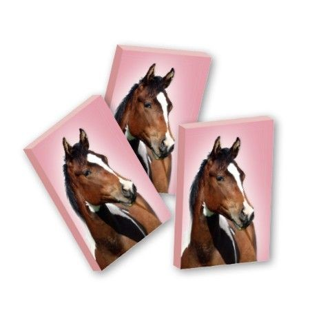 Gum Paard