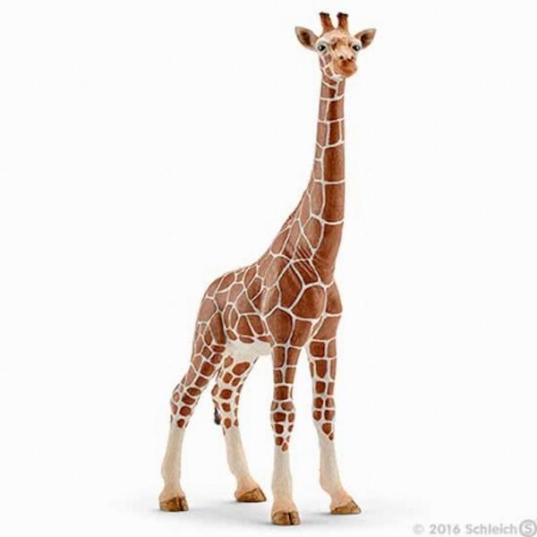 Schleich Giraf Wijfje