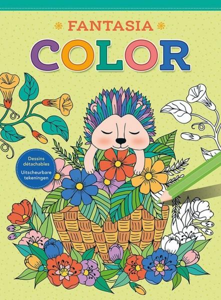 Kleurboek Fantasia Color
